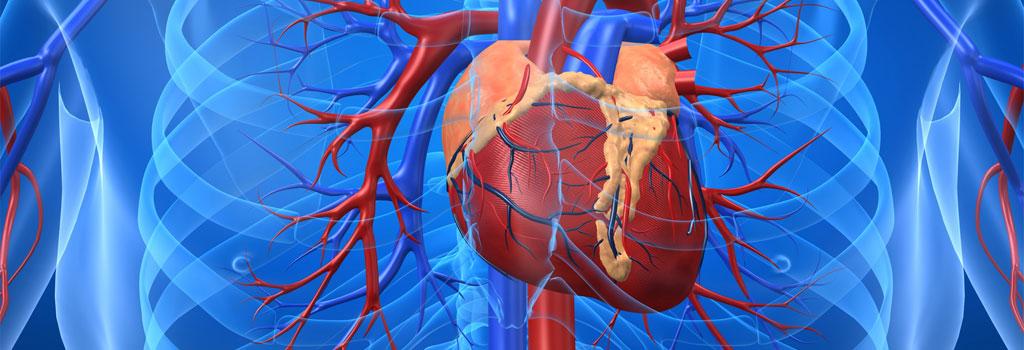 Buone risposte di medicina varicosity